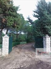 Zona Castel del Monte (nel raggio di 5 chilometri) di distanza