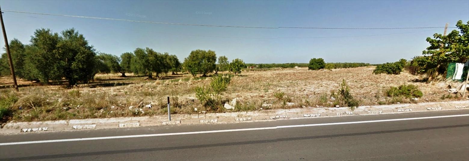 Terreno Residenziale in Vendita Andria