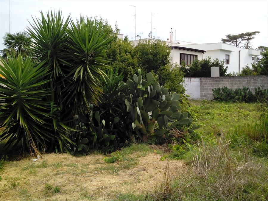 Terreno Edificabile Residenziale in vendita a Arnesano, 9999 locali, Trattative riservate | Cambio Casa.it