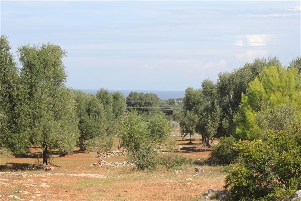 Terreno Edificabile Residenziale in vendita a Carovigno, 9999 locali, prezzo € 65.000 | Cambio Casa.it