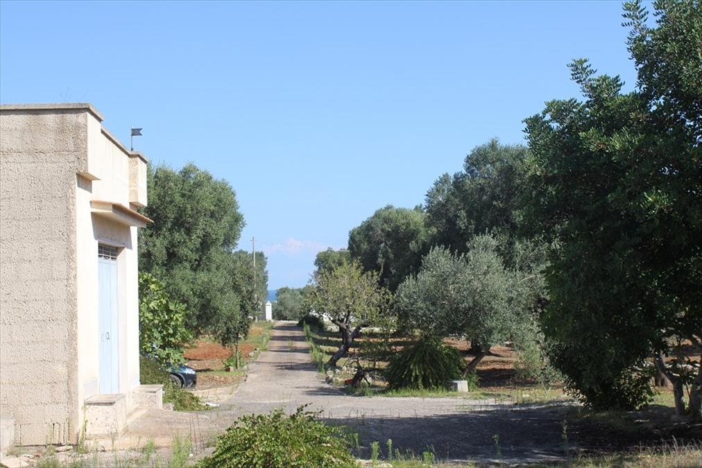 Terreno Edificabile Residenziale in vendita a Carovigno, 9999 locali, prezzo € 85.000 | Cambio Casa.it