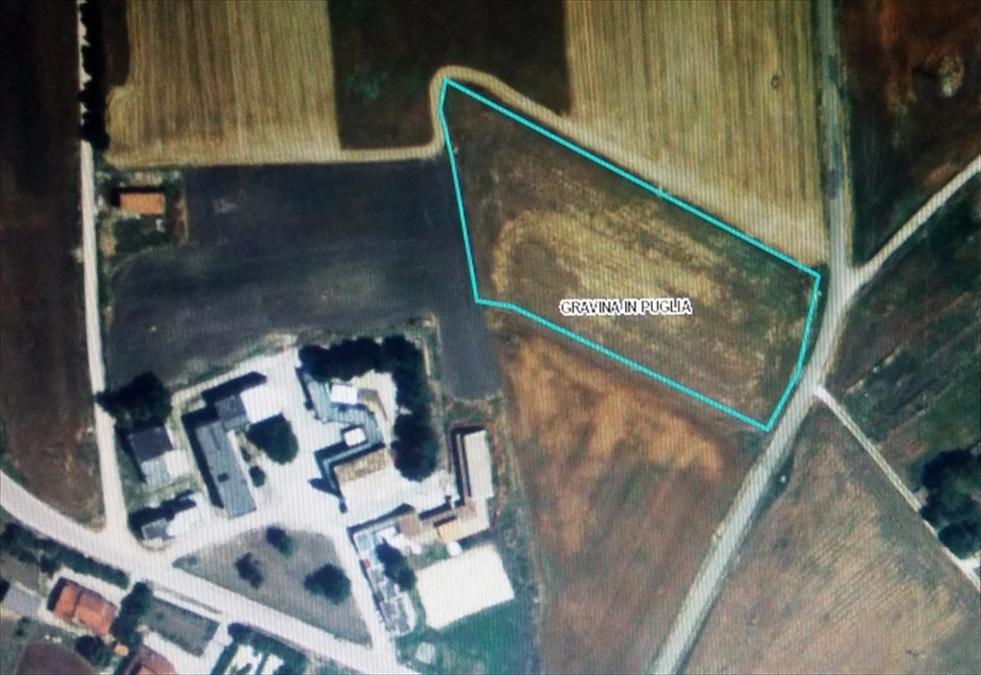 Terreno Agricolo in Vendita Gravina in Puglia