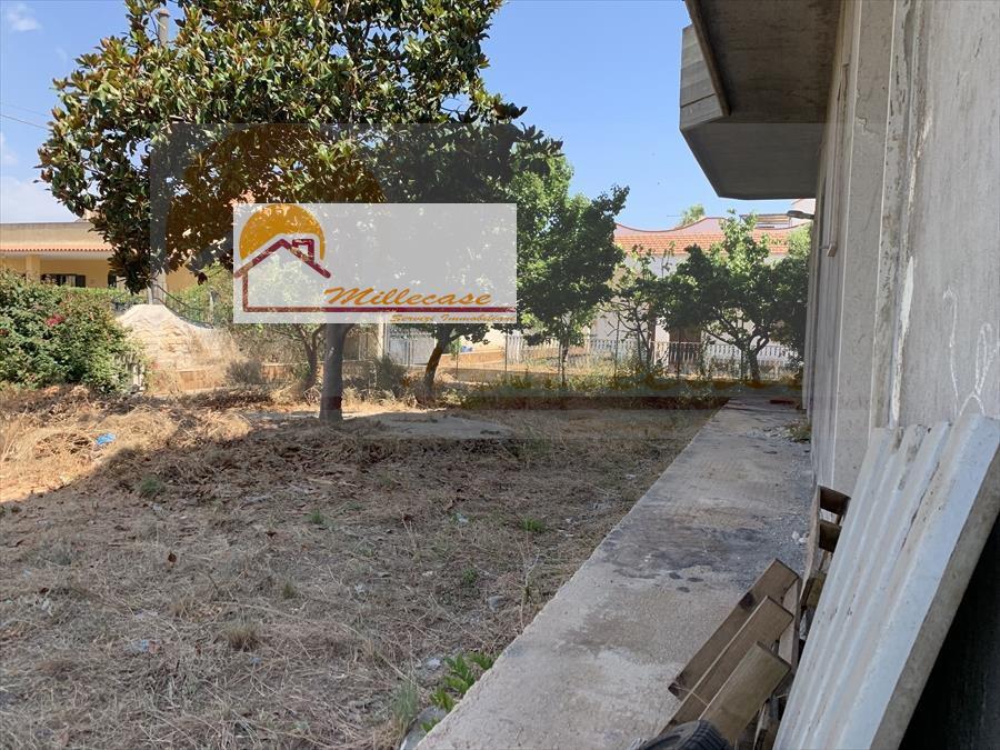 vendita villa o villino in siracusa rif. 774
