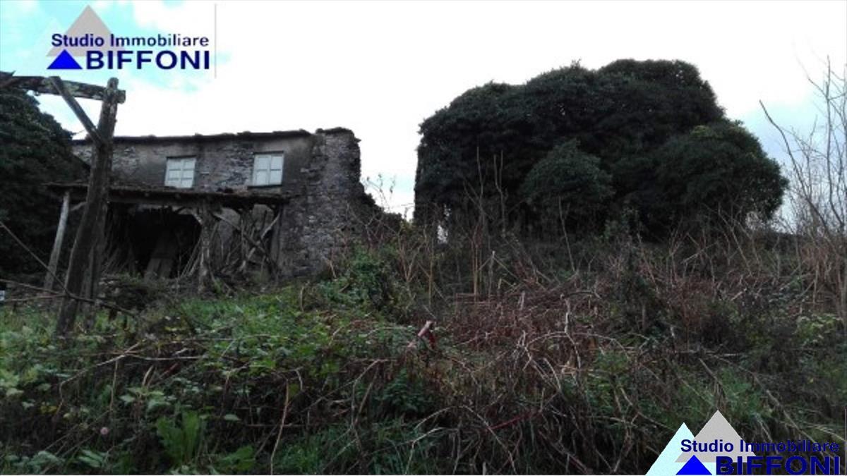 Rustico / Casale in Vendita a San Colombano Certenoli