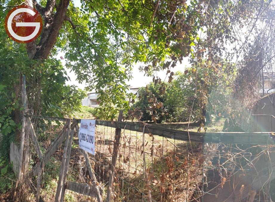 Vendita Terreno Residenziale Taurianova