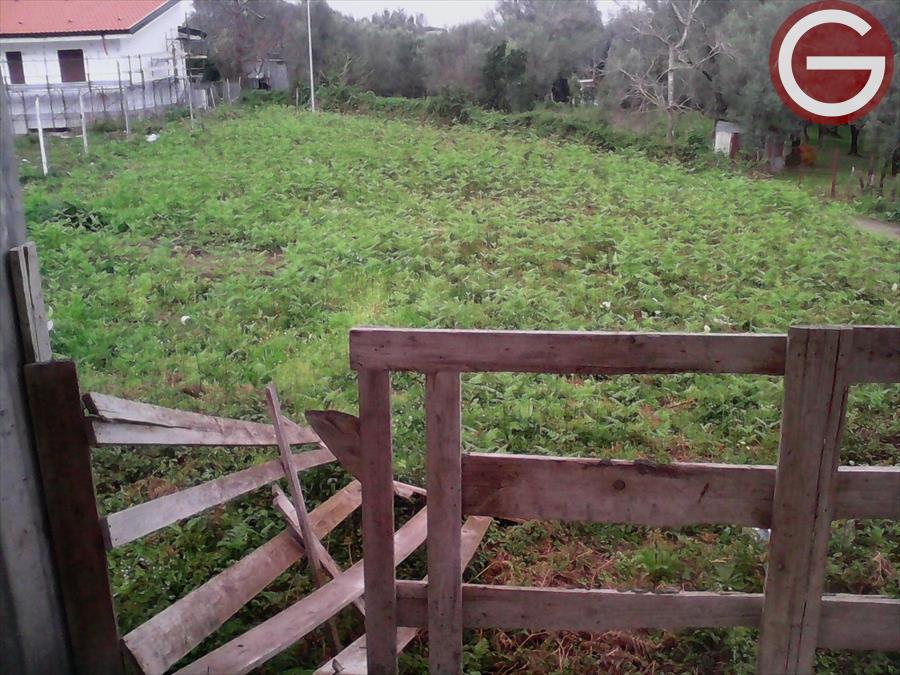 Vendita Terreno Residenziale Cinquefrondi