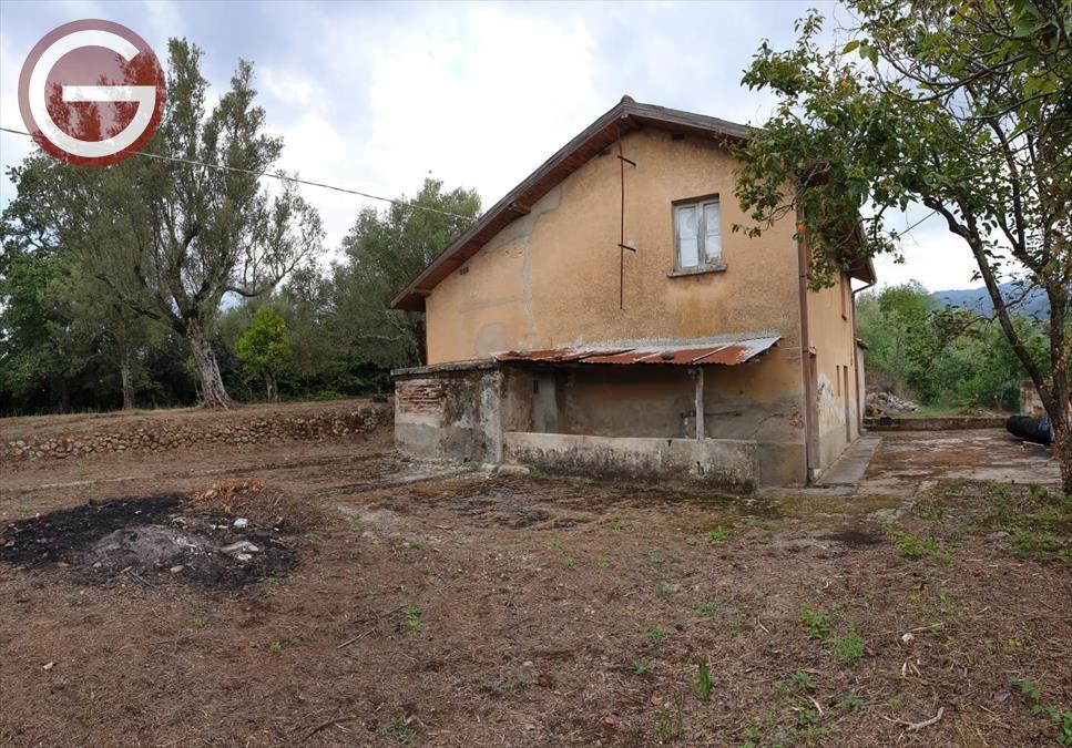 Vendita Terreno Agricolo San Giorgio Morgeto