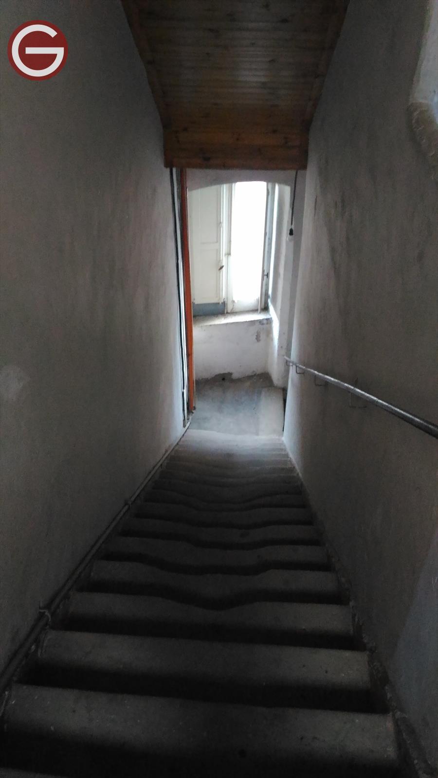 Appartamento Cittanova 475