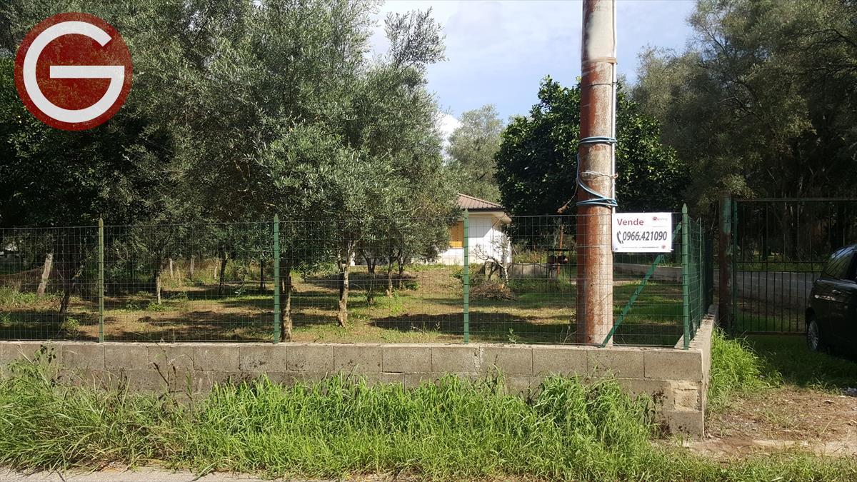 Rustico/Casale/Corte Cittanova 586