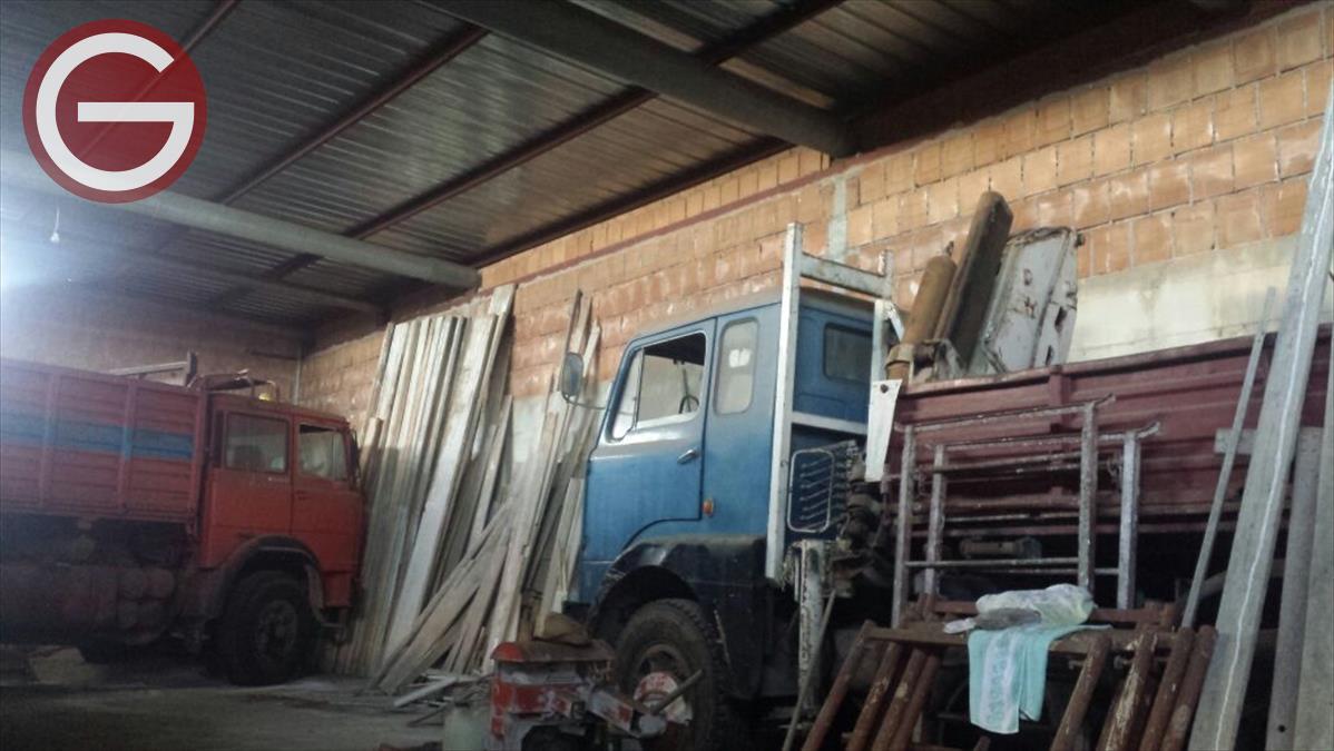 Terreno Industriale Cittanova 407