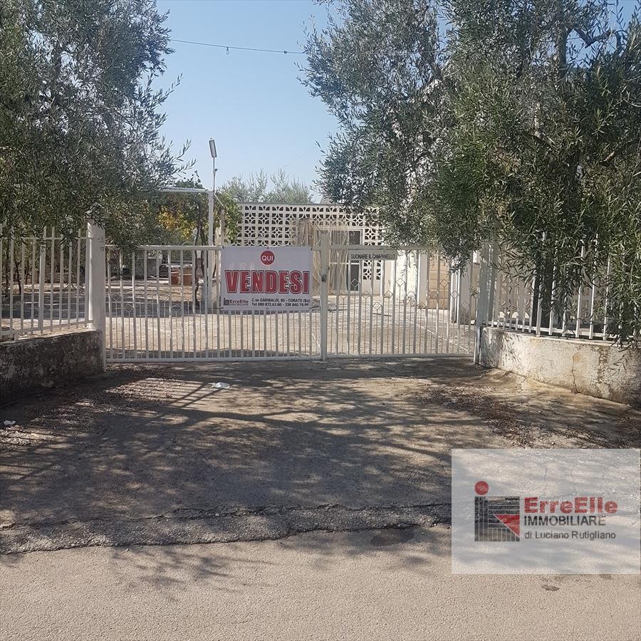 Terreno agricolo in Vendita a Corato Via Boccotero - Subito prima del centro sportivo