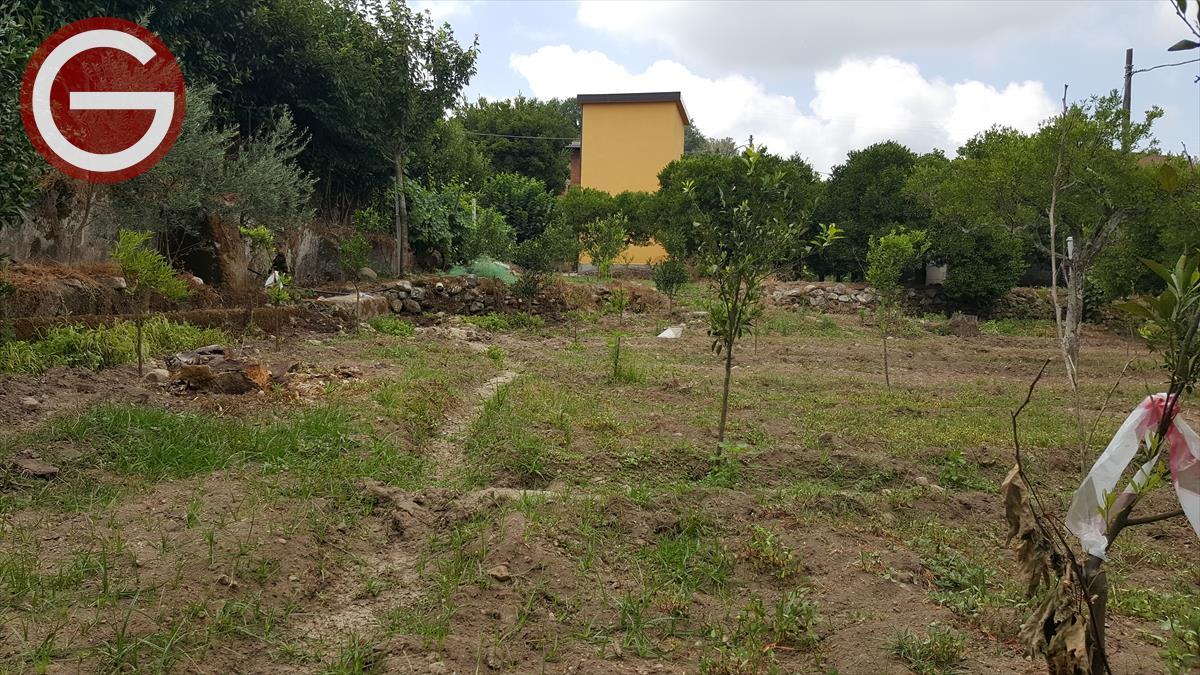 Vendita Terreno Agricolo Polistena